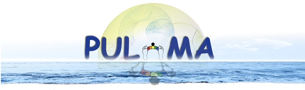 cropped-pulma-home-big-logo.jpg
